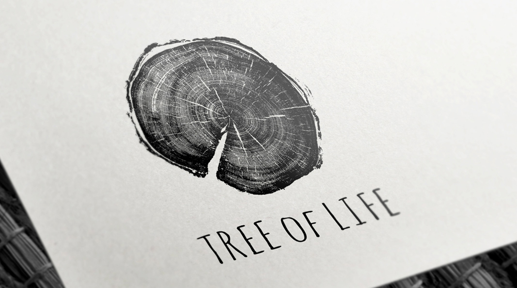 Cracker & Rush: Case Study - Tree of Life - Featured image